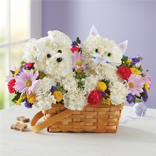 1-800-Flowers® Paw-Some Pals™