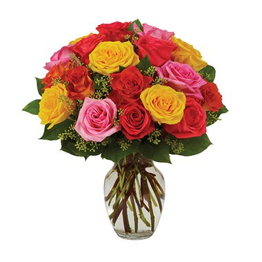 Assorted roses, bright (BF230-11KL)